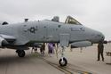 A-10 Thunderbolt II ~ Idaho ANG ~ 190th FS